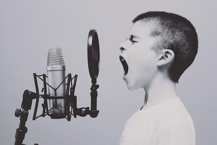動画用に使う音声合成ソフトは何が良いか調べてみた結果